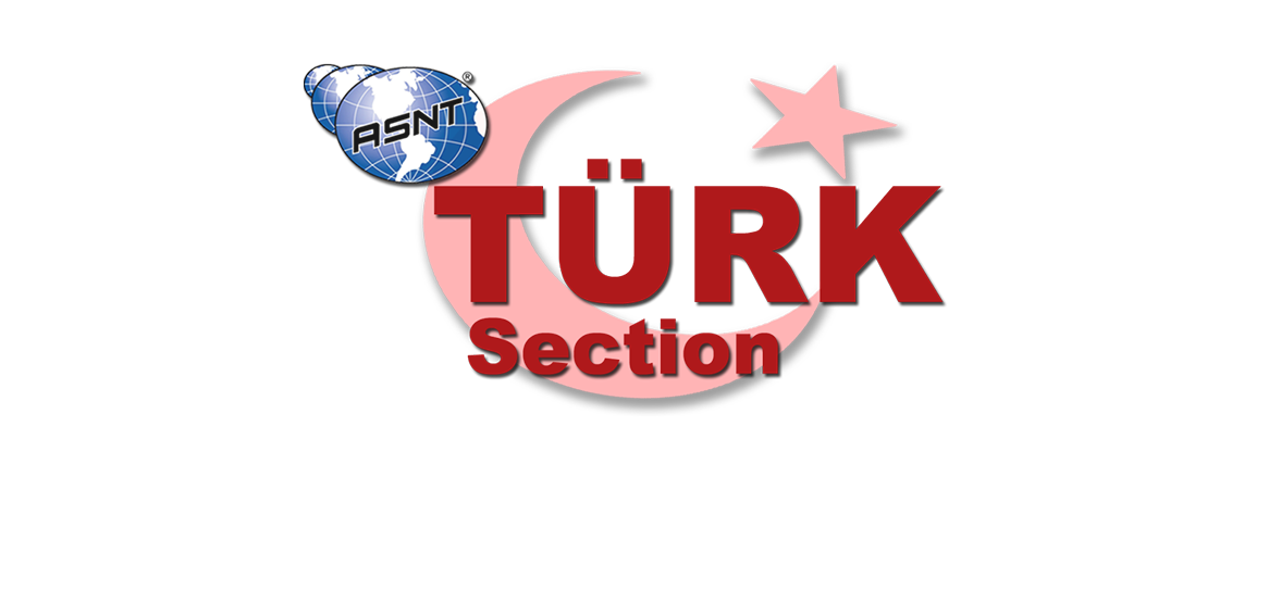 asnt-turk-logo1